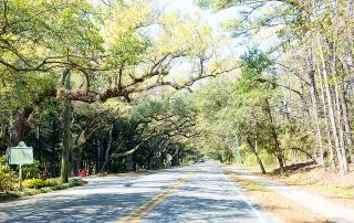 Ultimate Gulf Coast Road trip